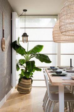 JASNO vouwgordijnen in vtwonen weer verliefd op je huis