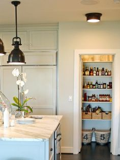 Tiny kitchen pantry! {We could remove our tacky bifold door, add colorful wallpaper, and reorganize}