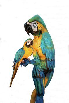 Johannes Stoetter, Airbrush Art, See Tattoo, Art Tribal, Illusion Art, Foto Art, Hand Art, Art Abstrait, Fine Art Gallery