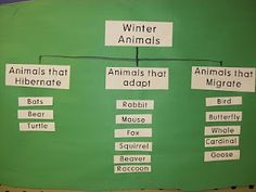 Winter animal charts-can be adapted for animal units