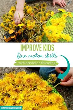 Take play outside for a fun fine motor activity for toddlers and preschoolers. Super simple, no-prep activity using dandelions! Outdoor Games For Toddlers, Free Activities For Kids, Summer Activities For Kids, Water Activities, Creative Activities, Preschool Activities, Imagination Tree, Gross Motor Skills, Toddler Preschool