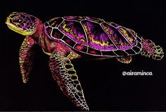 Sea Turtle by Maria Helm