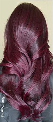 50 Purple Hair Color Ideas for Brunettes You Will Love in Purple hair color ideas for brunettes is in, ladies! When work comes to hair color ideas which can truly flatter any skin tone, purple hair colors are. Hair Color Purple, Hair Color And Cut, New Hair Colors, Purple Tips, Red Purple, Red Color, Plum Colour, Ombre Colour, Purple Style