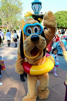 Awwww!!! Pluto!! Looks like he's ready for the carribean!!! :))