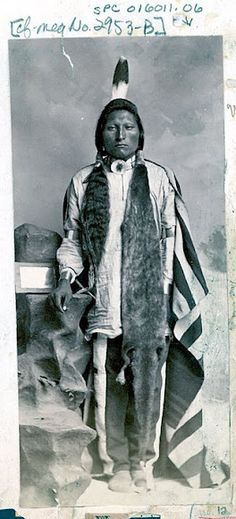 Wagon Man - Arikara - circa 1880...wow look how long his hair is!!! BEAUTIFUL!!