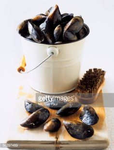 Stock Photo : Mussels with brush