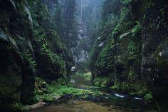 15 foto's van landschappen vol mystiek, alsof ze uit een donker sprookje komen van de gebroeders Grimm | Flabber