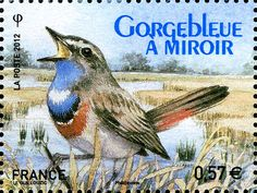 timbres de france/2012/Timbre FR077-12 France 14 Mai 2012 Faune Oiseaux Centenaire de la LPO Gorgebleue a miroir.jpg