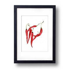 art print Chili Peppers kitchen art watercolor by TheJoyofColor