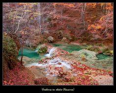 Ahora en otoño, el #NacederoDelUrederra está más bonito, con los colores ocres de los hayedos (Foto vía @ParqueNA_Urbasa / Twitter)