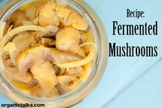 Fermented mushrooms can be used in salads, raw sauces, or as a great addition to raw sandwiches.