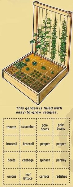Are you ready to plant your garden, but are feeling a little unsure of how to lay it out? Here's a collection of vegetable garden plans and layout to inspire you to start your garden this year. #littlegardens