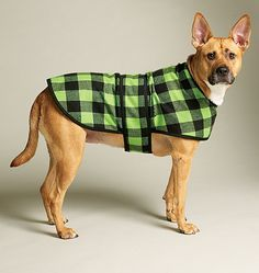 Jacoby would rock this! Dog Bed In 3 Sizes, Leash, Case, Harness Vest and Coat Crafts/Dolls/Pets McCall's Patterns Large Dog Coats, Large Dogs, Dog Sweater Pattern, Dog Pattern, Sweater Patterns, Vest Pattern, Dog Vest, Dog Jacket, Dog Clothes Patterns