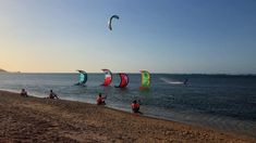 kitesurfing school and kite camp on the beach. Bungalow On The Beach, Snowboard Girl, Skateboard Girl, Burton Snowboards, Kitesurfing, Surf Girls, Wakeboarding, Roller Skating, Outdoor Camping