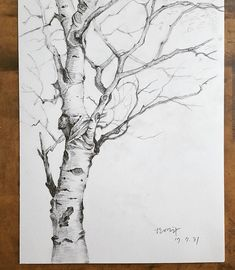 drawings of people Pencil Sketches Landscape, Landscape Drawings, Landscape Pictures, Tree Sketches, Art Drawings Sketches, Cool Drawings, Eye Drawings, Art Illustrations, Sketch Drawing
