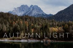 10 Autumn Light Lightroom Presets by WinsomeEffectsCo on Etsy