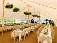 Traditional style marquee with long lines of tables, panoramic windows and plant pots hanging from wire Marquee Wedding, Tent Wedding, Our Wedding, Wedding Ideas, Hanging Plants, Potted Plants, Hanging Decorations, Nice, Inspiration