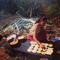Herradura: after riding/harvesting, we were grateful for delicious snacks: gorditas & quesadillas made right in fields