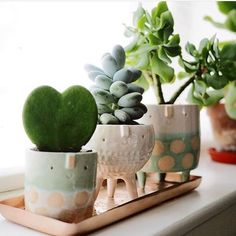 Ceramics ideas cactus Style cute planters Fantastic Free of Charge Ceramics ideas cactus Style cute planters - J A D E & S T O N E : handmade ceramic succulent planter set Excited to present my new creations of this week Product Description Indoor Planters, Diy Planters, Ceramic Planters, Garden Planters, Planter Pots, Indoor Cactus, Tall Planters, Modern Planters, Concrete Planters