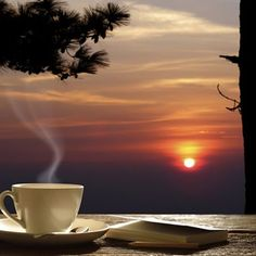 Lots Of Coffee Facts Tips And Tricks 5 – Coffee Coffee Gif, Coffee Barista, Coffee Quotes, Coffee Break, Coffee Shop, Coffee Americano, Coffee Humor, Coffee And Books, I Love Coffee
