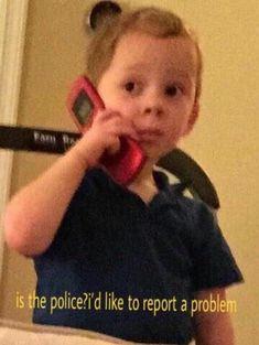 17 Best Gavin Meme Images Jokes Dankest Memes Funny Memes