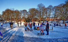 Enjoying the Winter in Noorderplantsoen,Groningen stad,the Netherlands,europe