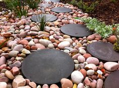 I love the black stepping stones against the red tones in the river rock, with the sprawling plant interlopers -  from Garden Screens Fremantle by sustainable garden design perth
