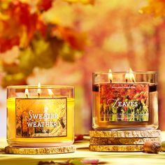 Fall in love with 2 of our fan-favorite Candles! | #JumpIntoFall