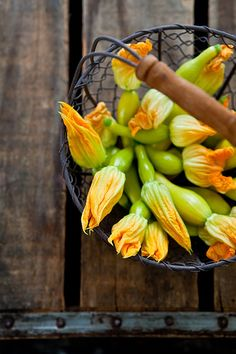 Squash Blossoms, recently did these stuffed with homemade herbed ricotta, battered and fried in olive oil. Yum.