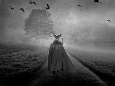 Messenger  by Hartwig H K D
