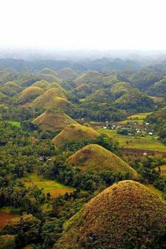 The Chocolate Hills are a geological formation in the Bohol province of the Philippines. There are at least hills but there may be as many as hills spread over an area of more than 50 square kilometres. They are covered in green grass that tur Voyage Philippines, Philippines Vacation, Visit Philippines, Bohol Philippines, Places To Travel, Places To See, Visayas, Tourist Spots, Voyage