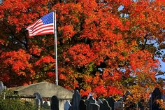 Vibrant #foliage and a #flag at gravesite of William Whipple at the North Cemetery in #PortsmouthNH @seacoastonline