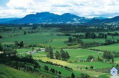 Hacia el flanco nororiental de la Sabana de Bogotá (Colombia) está el Valle de Sopó, cuyos pastos mejorados son ideales para la ganadería.  Fotógrafo: Peter Goodhew
