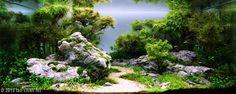 Wonderful underwater landscape ! 332 liter (110 x 55 x 55 cm ) aquarium created by lao chan fei from Macau