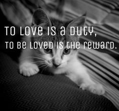 Love n love