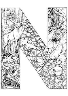 Il y a des animaux préhistorique dans ce dessin, lettre N à colorier