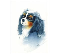 Cavalier King Charles Spaniel - Original Watercolor Painting 6x9 inches Dog Portrait Pets Animals