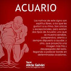 Bueno voy del 1 :) Zodiac Signs Meaning, 12 Zodiac Signs, Zodiac Sign Facts, Aquarius Zodiac, Sagittarius, Signes Zodiac, Horoscope, Cancer, My Love