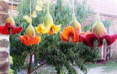 In den zauberhaften Farben zinnoberrot,gelb,orange und  warmes dunkelrot,mit rotem Farbverlauf, präsentieren sich hier wunderschöne Hängeblüten als Fe