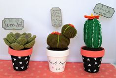Hey, I found this really awesome Etsy listing at https://www.etsy.com/listing/496093722/large-crochet-cactus-crochet-succulents