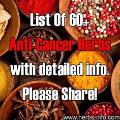 Cancer & Herbalism / 60 herbs that have been suggested to have anti-cancer qualities Natural Cancer Cures, Natural Cures, Natural Health, Natural Medicine, Herbal Medicine, Herbal Remedies, Health Remedies, Alternative Heilmethoden, Alternative Health