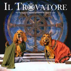 """Brutus & Victor starring as """"Manrico"""" & """"Count Di Luna"""" in Il Trovatore"""