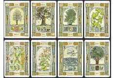 Astrologia celta del arbol. Mira tu fecha de nacimiento en la tabla y veras cual es el arbol que te corresponde