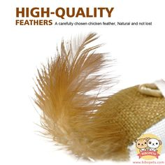 fine Cute Cat Toy Interactive Pet Mouse Feather Toys For Kitten Cats Playing Training Vivid Mice Ball Chicken Shape
