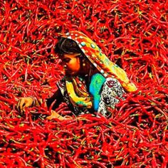Hot Chilli Woman...