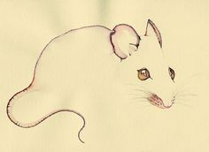 Whiskers by Colleen Parker, via Flickr