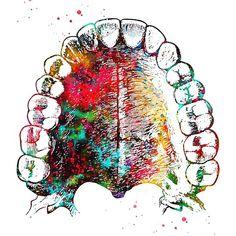 ' Human Teeth' by erzebetth Dentist Art, Dentist Clinic, Dental Hygiene School, Dental Life, Dental Wallpaper, Dental Images, Teeth Drawing, Dental Shirts, Dental Photography
