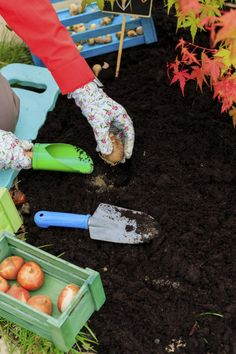 Top 10 Fall Garden Checklist  vegan, plantbased, earth balance, made just right