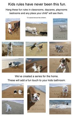 the parallels between dogs and kids continue...