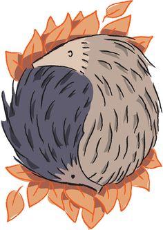 and a hedgehog yin yang!